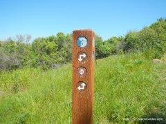 bay area ridge trail