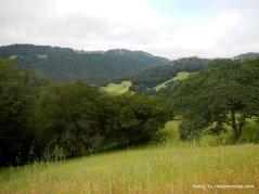 walnut trail