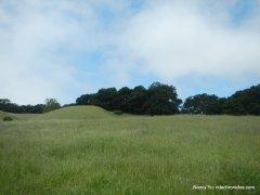 grassy hills