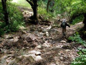 jackass canyon trail