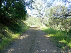 unsigned trail