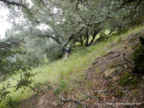 no trail-head east along ridge