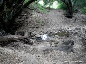 creek xing