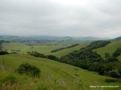 wilson hill views