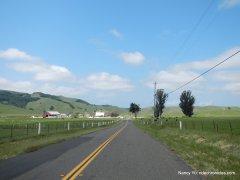 chileno valley