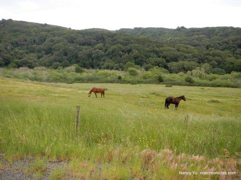 black mtn ranch