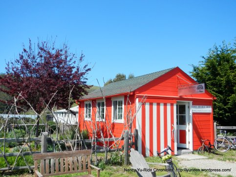 tunitas creek red hut