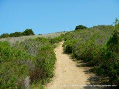 lower sea foam trail-steep incline