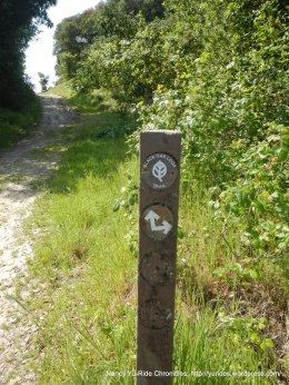 stay on black oak trail