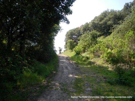 black oak trail black oak trail