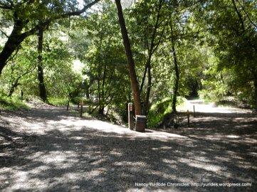 kennedy creek trail