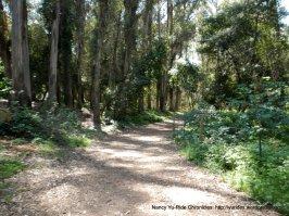 laurel loop trail