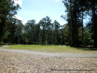 kennedy grove lawn area