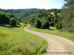 rim trail views