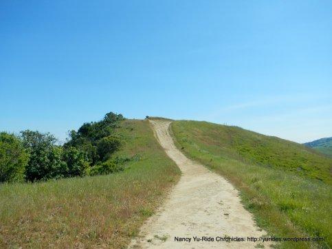 rim trail high point