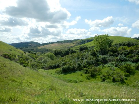 franklin ridge
