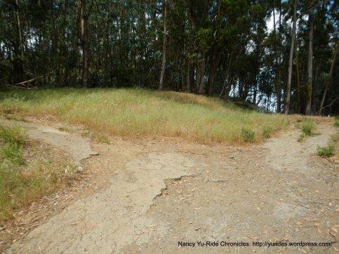 trail split-go left