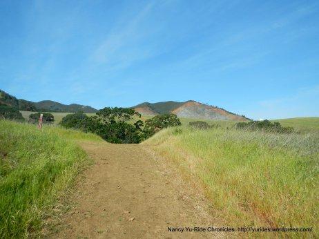 to back creek trail