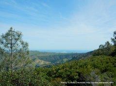 murchio gap views