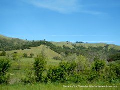 san geronimo valley dr