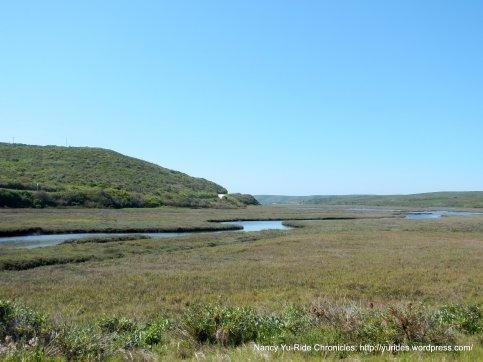 schooner bay marshes