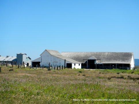 historic D ranch