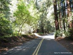 descend pinehurst rd