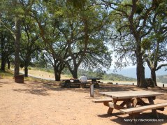 barbecue terrace group picnic area