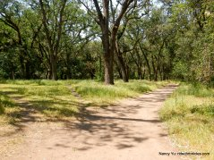 diablo foothills