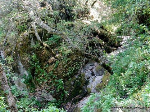 little yosemite trail-waterfall