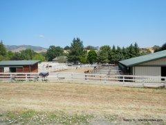 equine facility