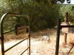 cattle gate-rankin park trail