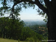 rankin park trail views