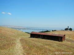 cattle shelter