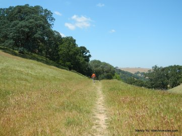franklin ridge loop trail