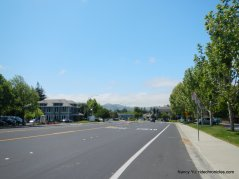 san ramon valley blvd