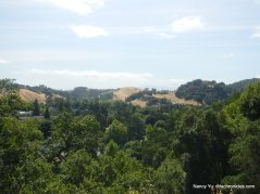 mt wanda trail view