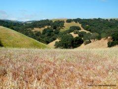 mt wanda hills