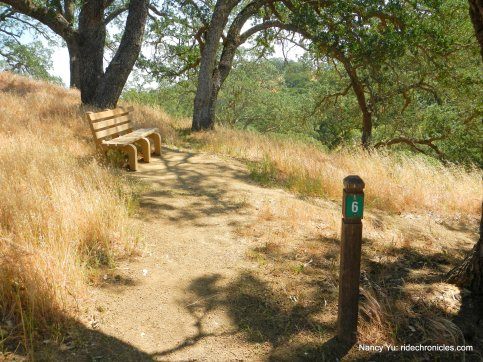 nature trail bench