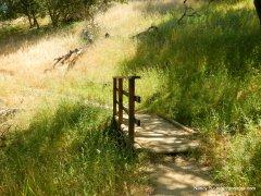 nature trail bridge
