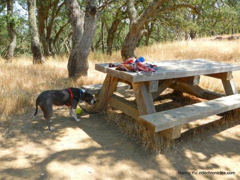 nature trail picnic area