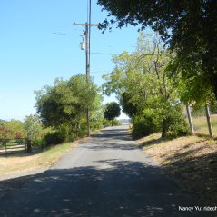 borges ranch rd