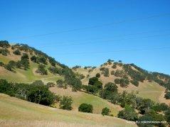 open space hills