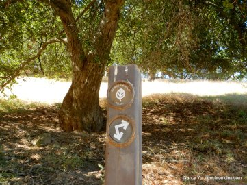 borges ranch trail junction