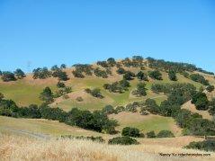 castle rock trail views