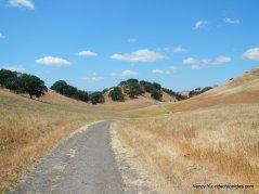 briones mt daiblo trail