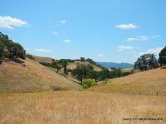 diablo hills