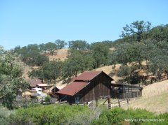 borges ranch