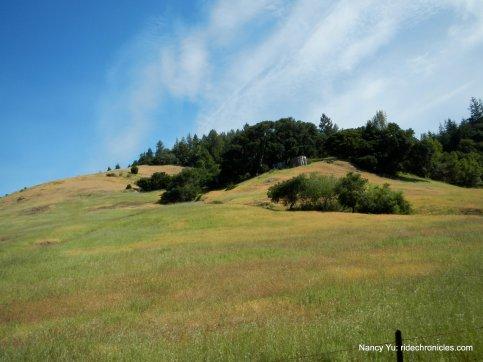 lucas valley rd-shroyer mtn