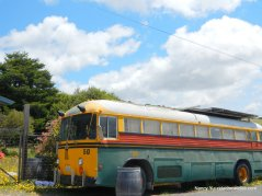 tomales bus